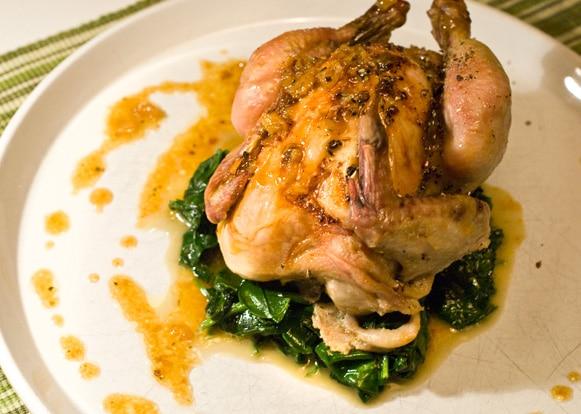 Poulet roti farci au foie gras recette facile pour votre for Une farce au theatre