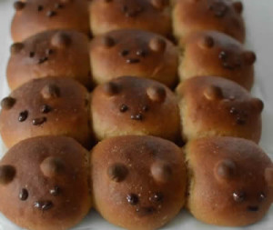 petits pains brioches chocolat avec thermomix