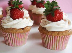 muffin nature