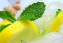Limonade à la menthe au thermomix
