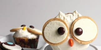 Biscuits hibou pour fête