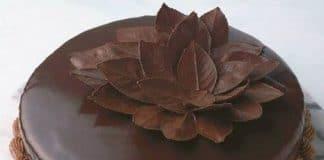 Feuilles en chocolat noir au thermomix