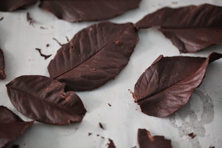 Feuilles en chocolat noir au thermomix 1