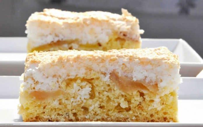 Cake aux pommes et noix de coco au thermomix