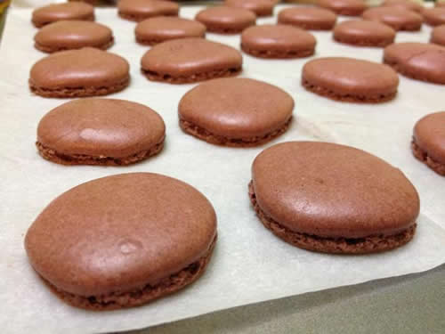 Macarons chocolat faciles au thermomix 2