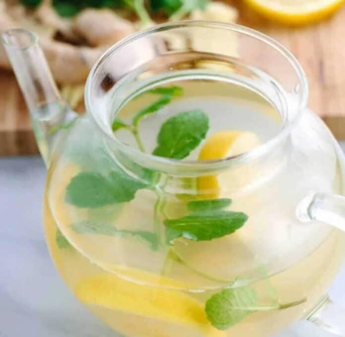 Infusion au citron gingembre et menthe au thermomix